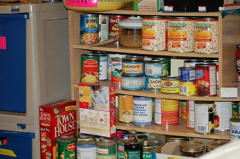 best canned food for survival storage