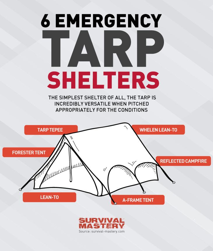 Tarp shelters infographic