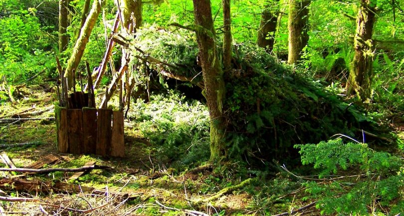 Natural wilderness shelters