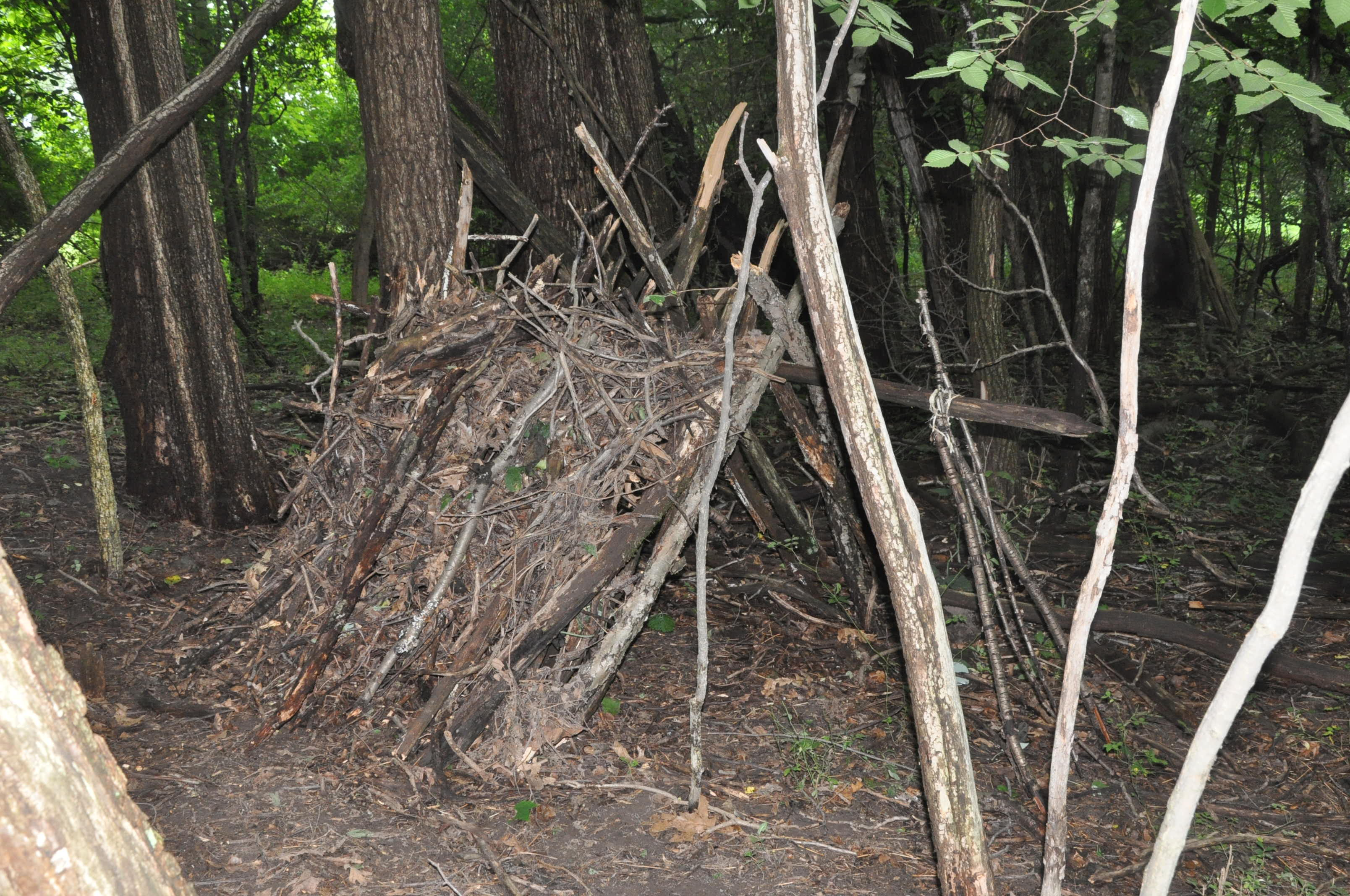 How to Build Survival Shelter: Getting Yourself Out of the Elements in a Pinch