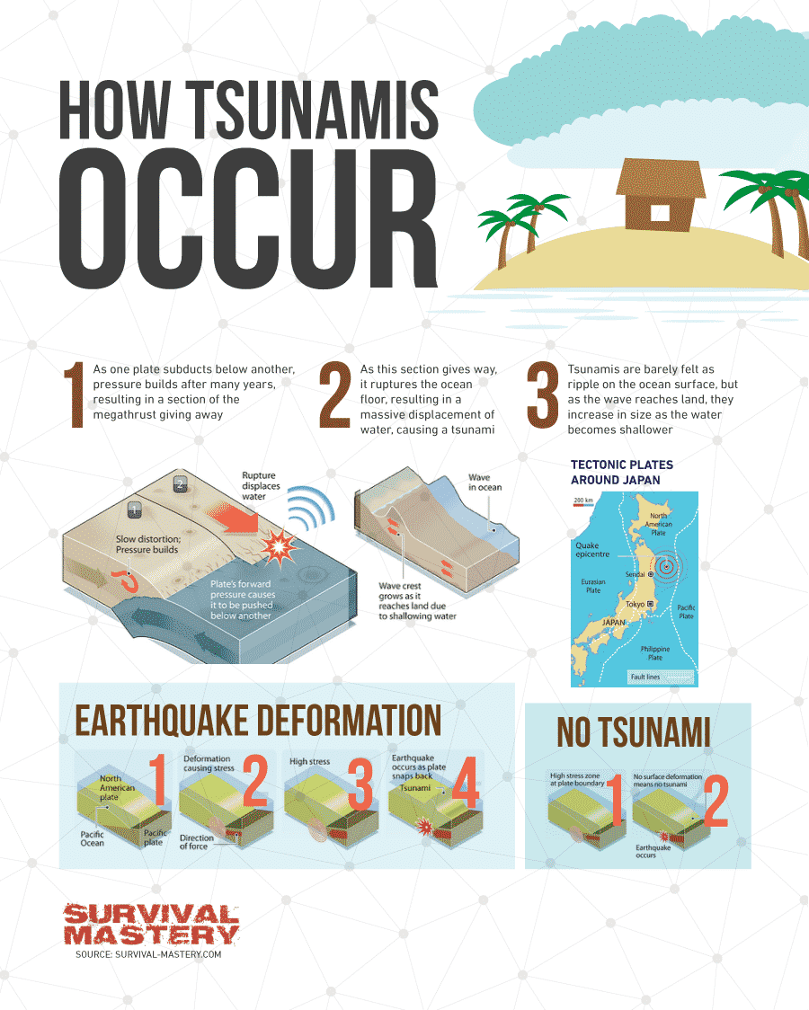 How to Survive a Tsunami infographic