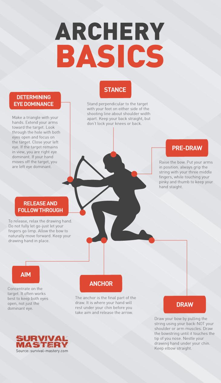 Archery basics infographic
