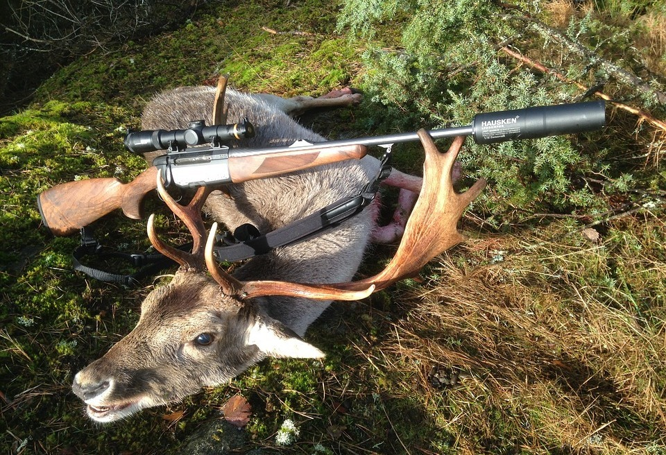 The Best Deer Rifle: Weapons Overwiev For The Hunter In You
