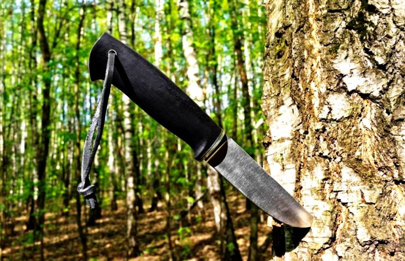 Best Survival Knife Guide: Reviews and Advices from the Experts