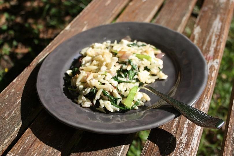 Broccoli cheese with barley (orzo)