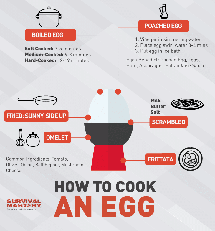 How to cook an egg infographic