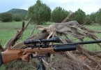 Rifles for hunting
