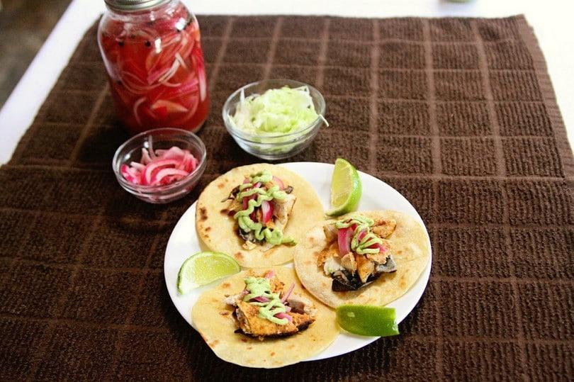 Trout taco recipe