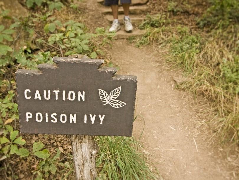 Caution Posion Ivy