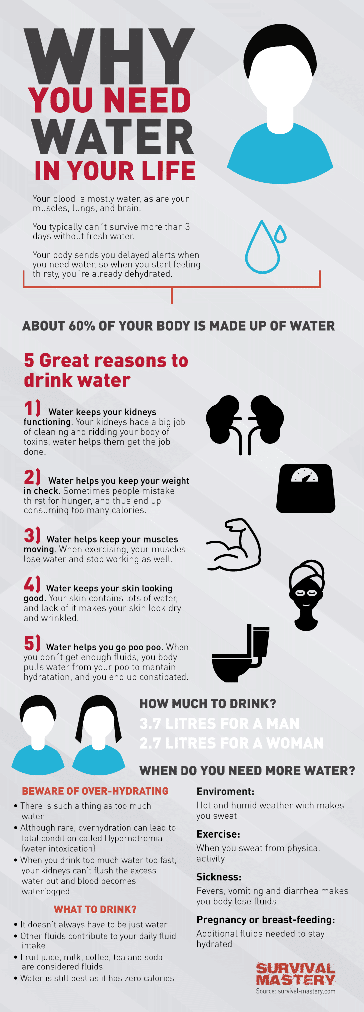 Water in life infographic