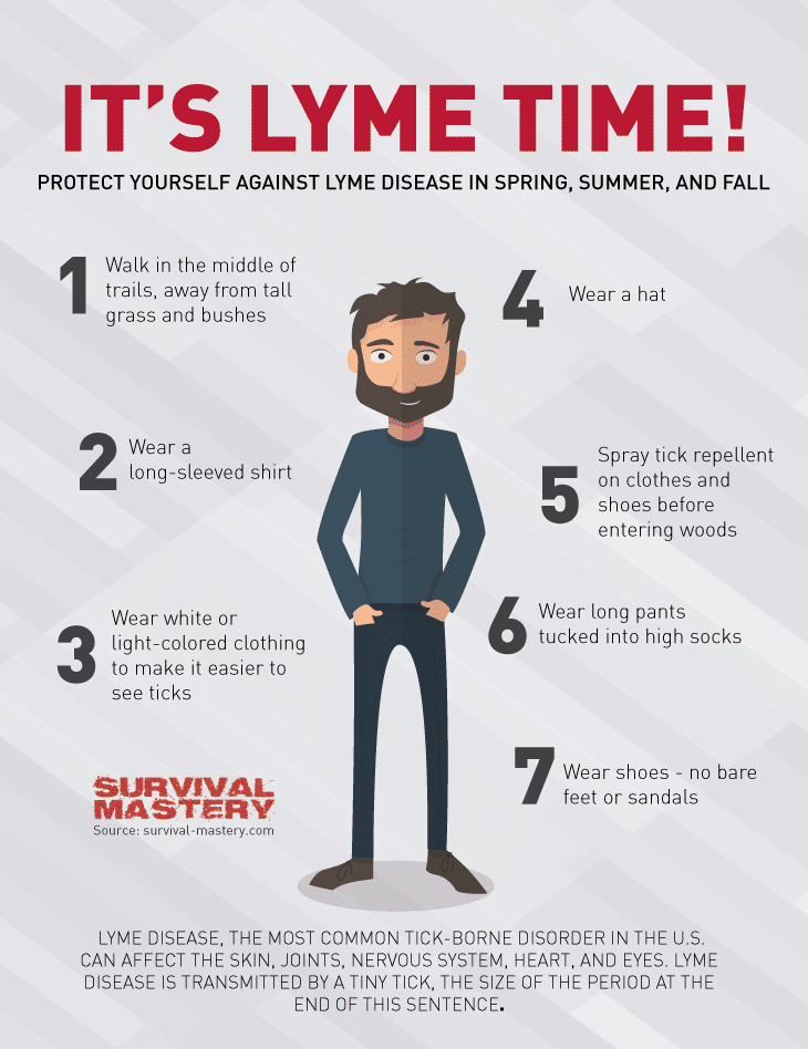 Lyme time infographic