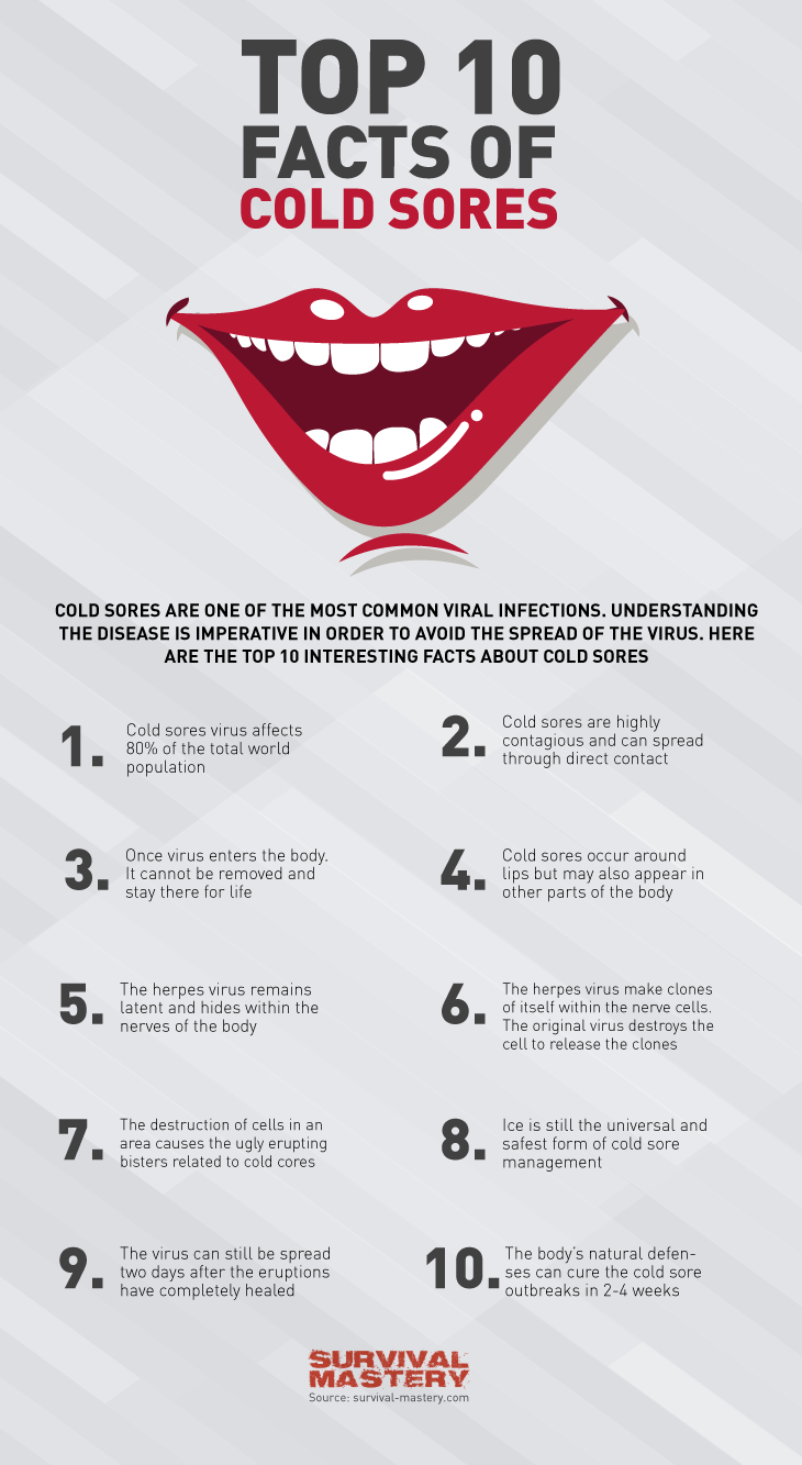 Cold sores infographic