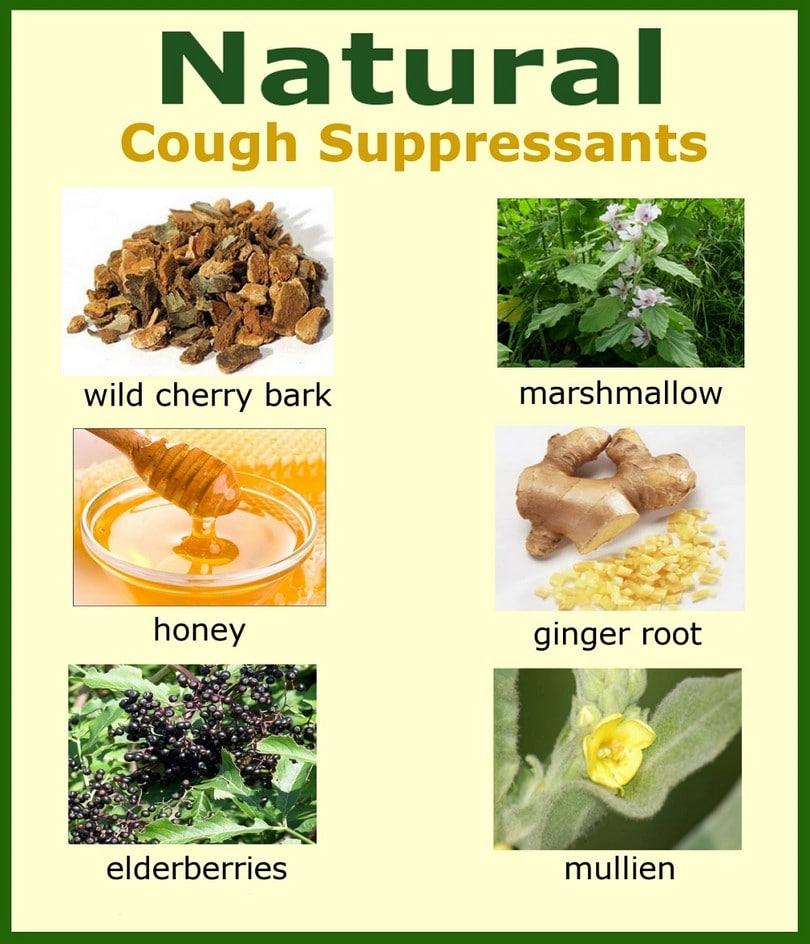 Natural cough suppressant