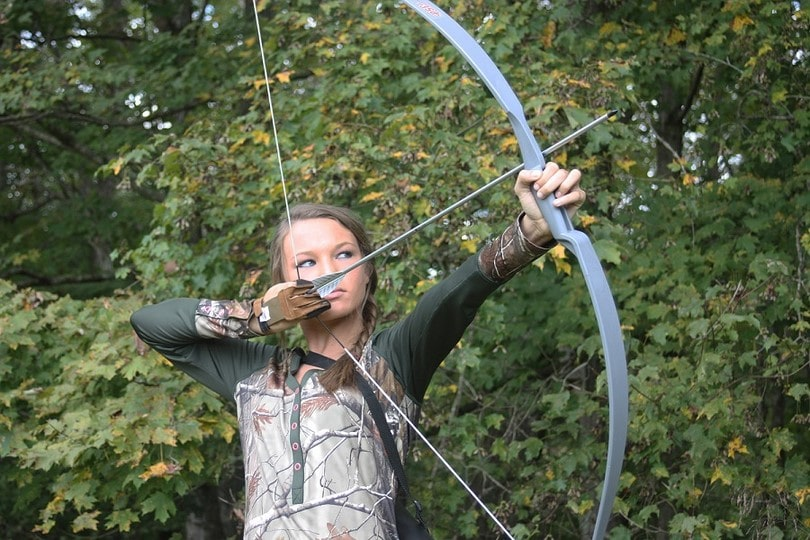 Silver snake hunting bow