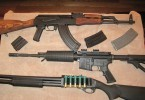 Survival guns and rifles