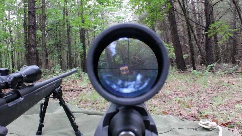 Through the Remington scope