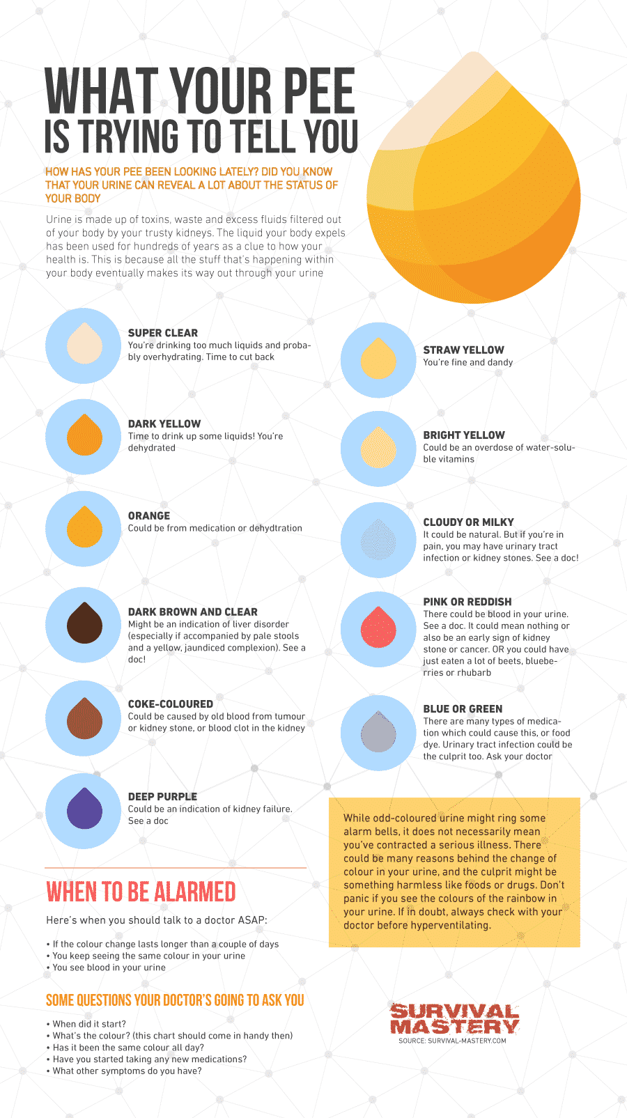 Water Intoxication infographic