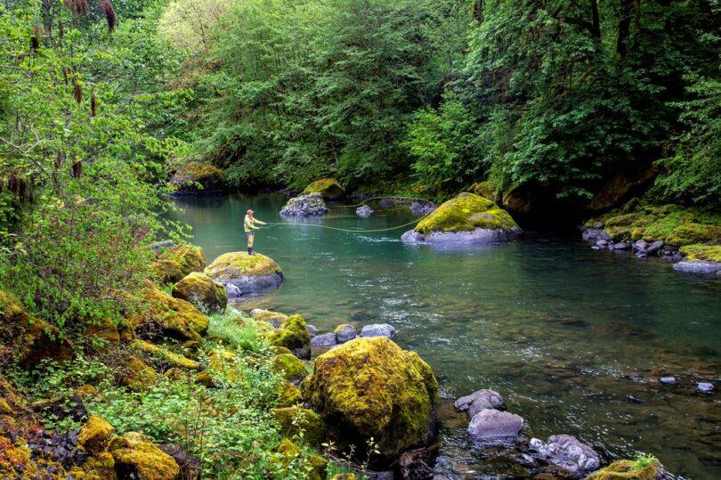 River Fishing Tips