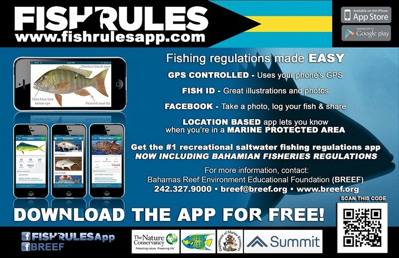 Best fishing apps for your smartphone overview for Best fishing apps