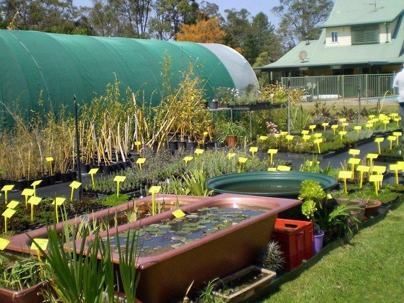 Choosing survival seeds how to stock a survival garden for Survival garden