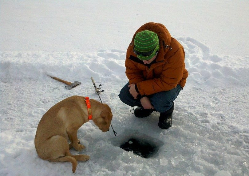 Ice fishing with dog