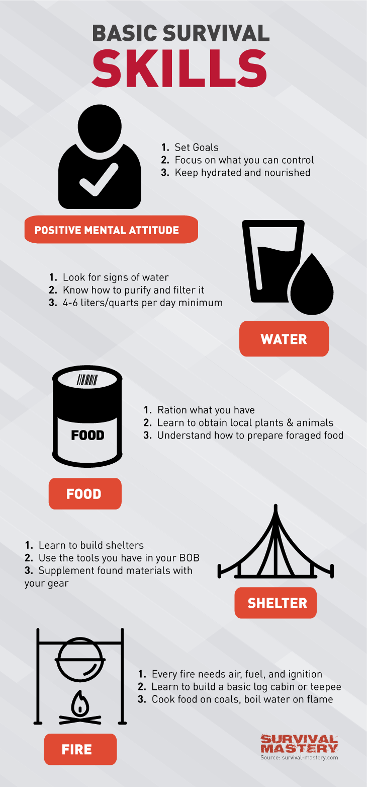 Survival skills guide infographic