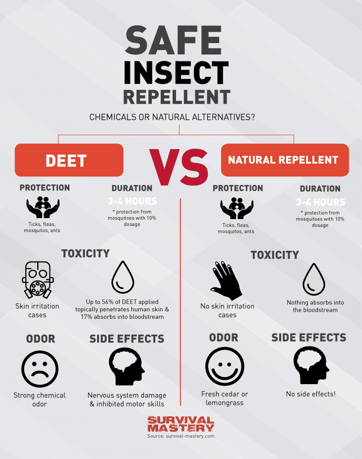 Insect repellent infographic