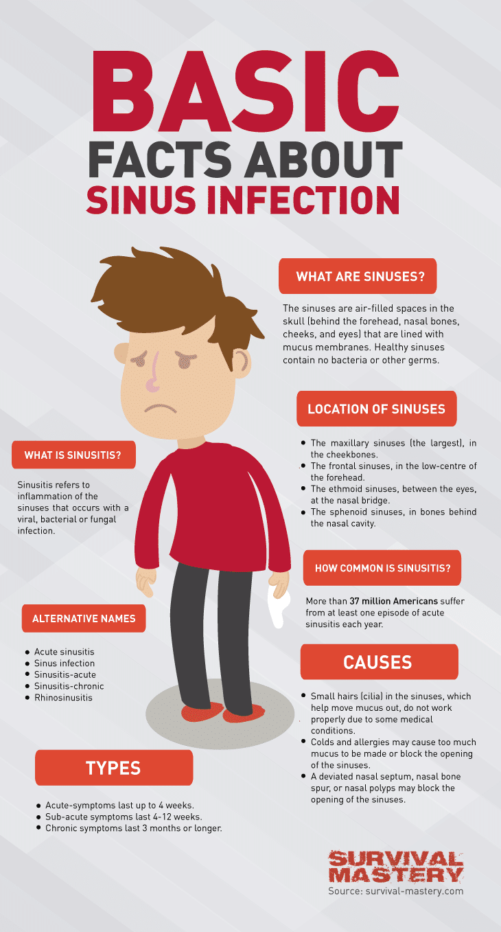 Sinus infection infographic
