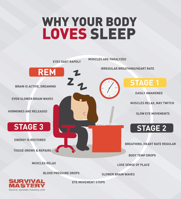 Loves sleep infographic