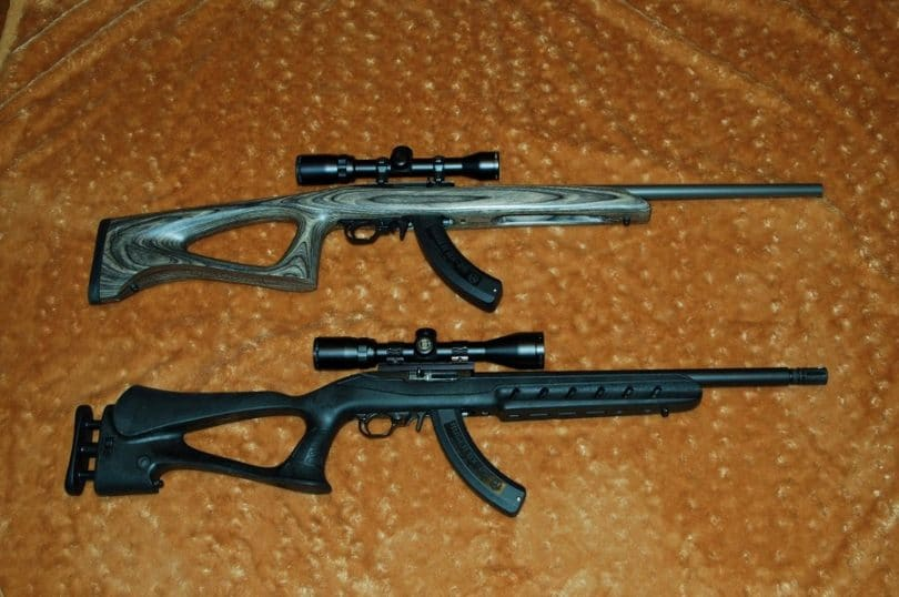 Ruger 10 22 placa a tope
