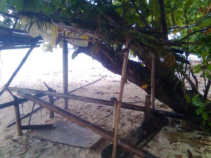 Start building a shelter