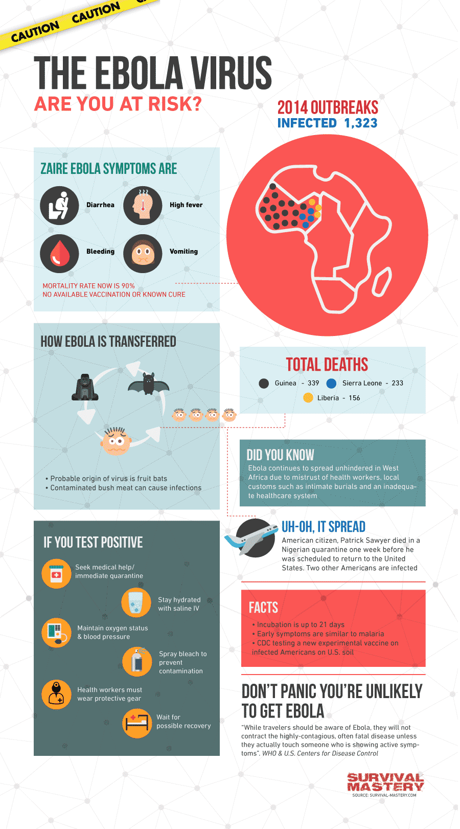 The Ebola facts infographic