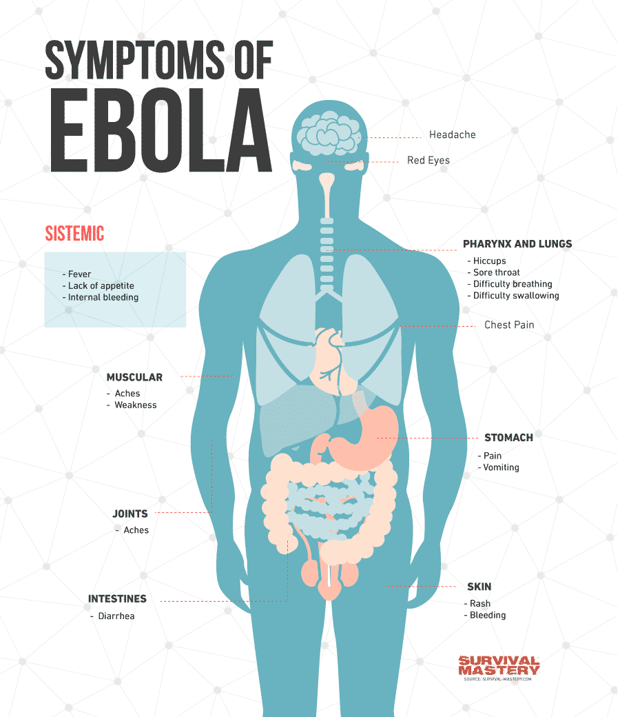 The Ebola symtoms infographic