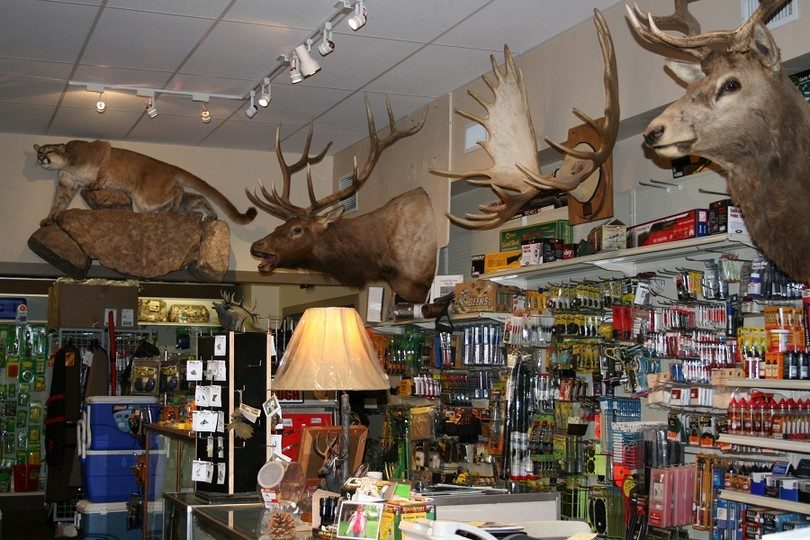 Buying hunting gear live in store