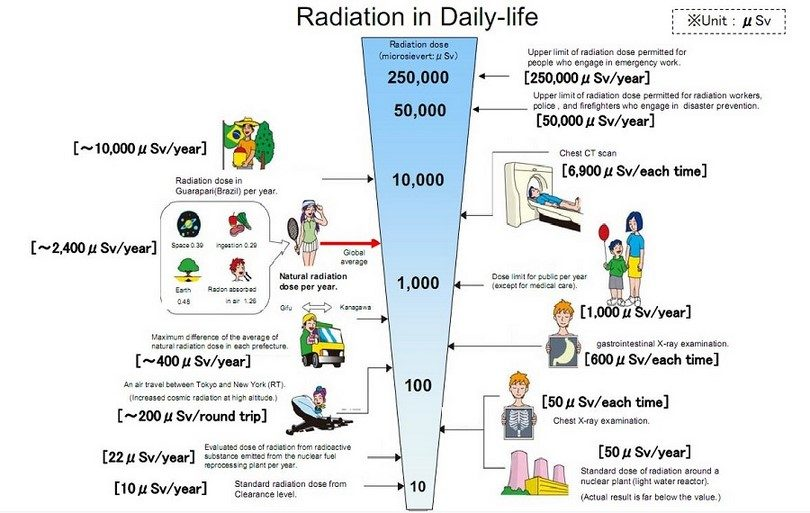 Daily life radiation chart