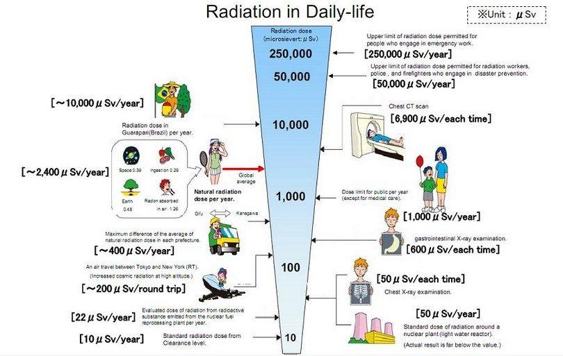 Daily life radiation chart