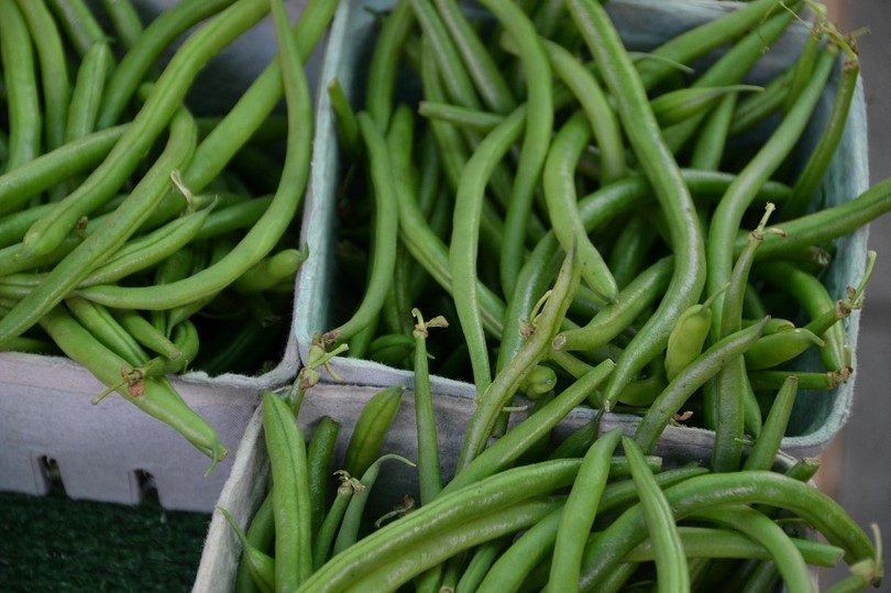 Green bean picked