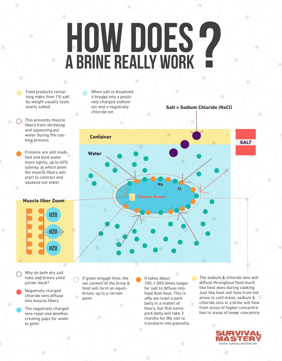How to brine infographic