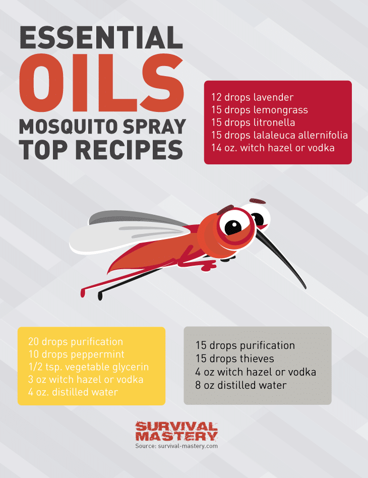 Mosquito spray infographic