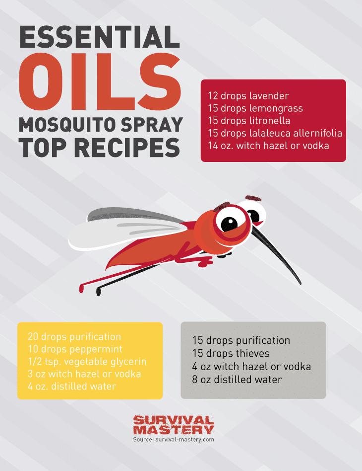 Mosquito spray infographic