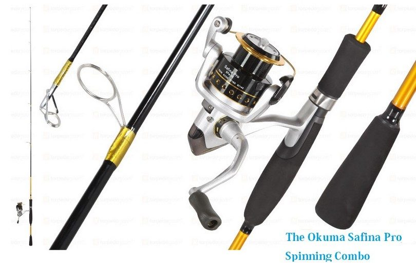 Best fishing rods having the right tools can make a for Best fishing rod and reel combo for the money