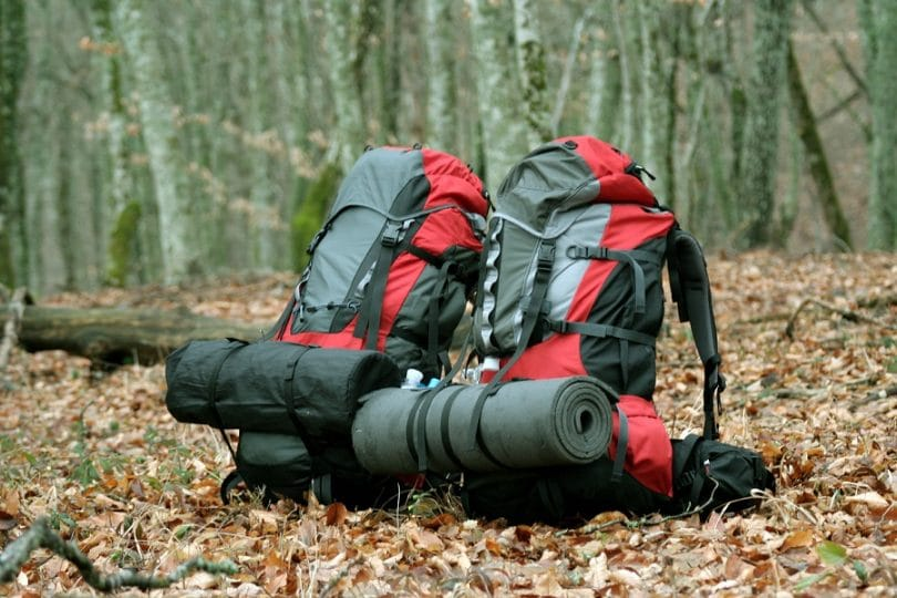 Backpacks in the leaves