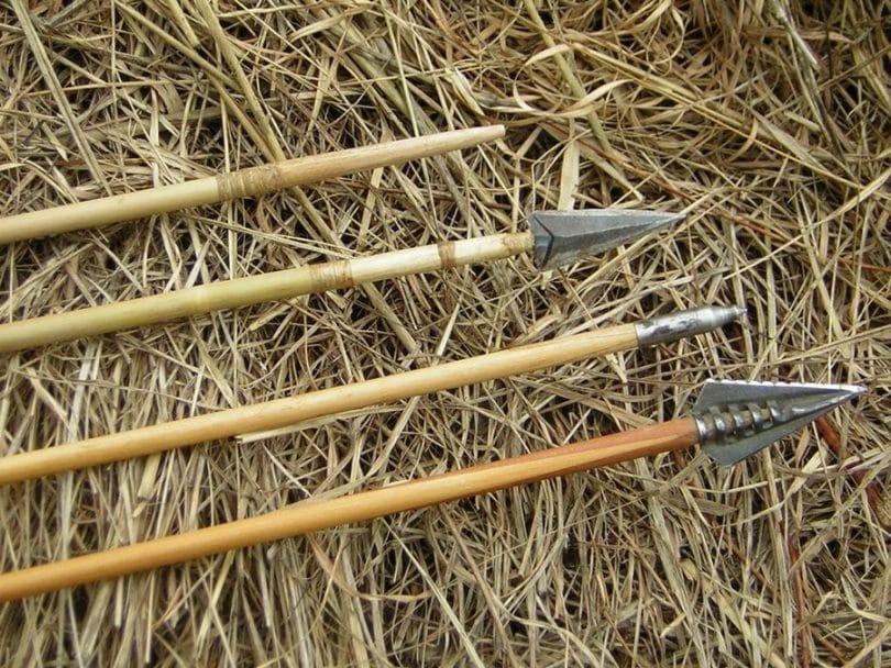 Bamboo arrows