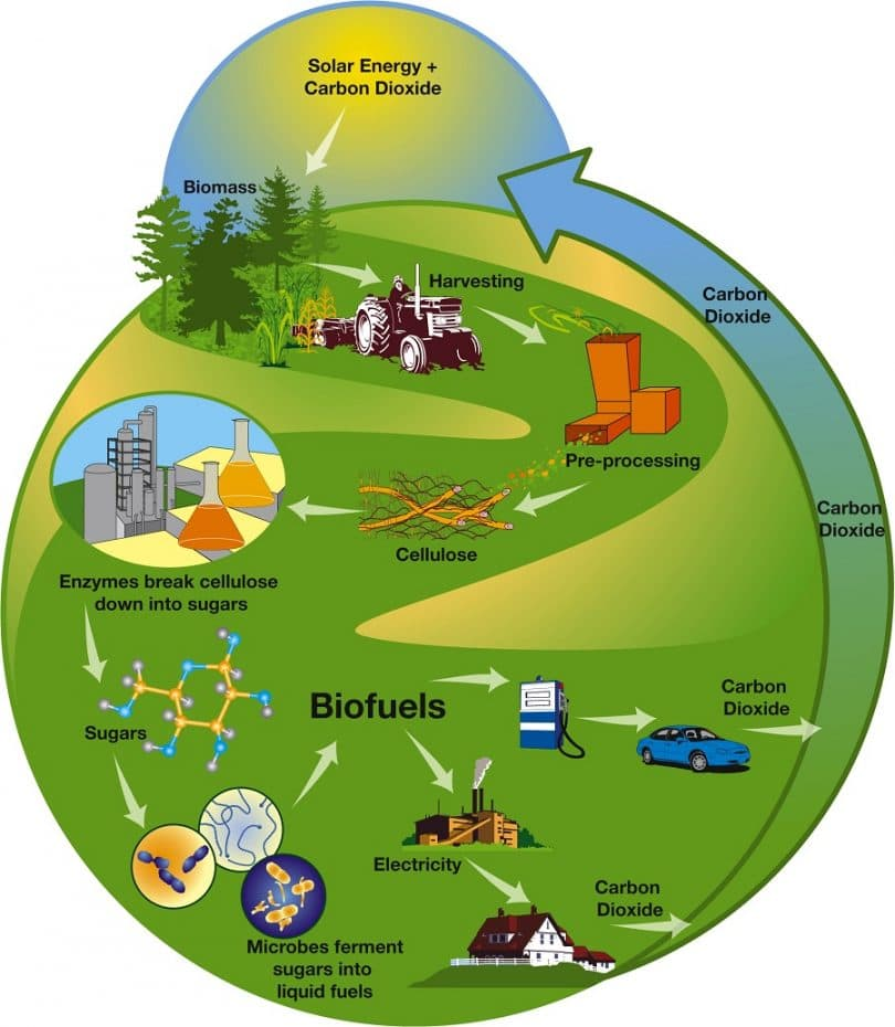 Benefits of biofuel