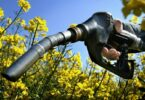 How to Make Biofuel