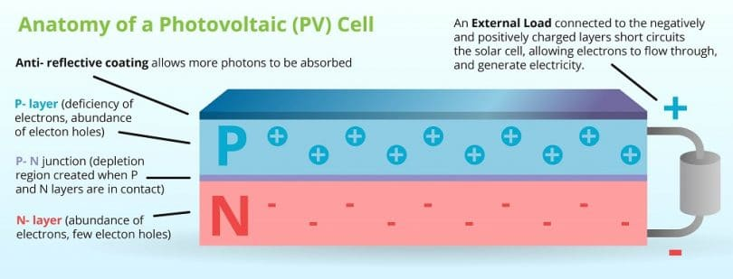 PV-Cell anatomy