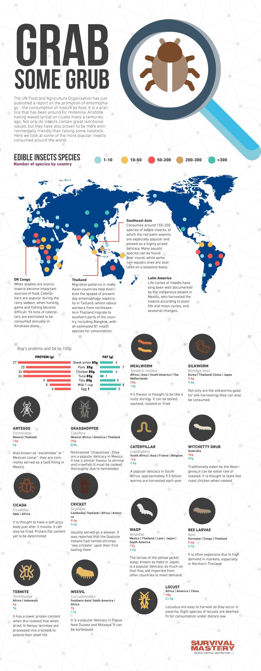 Grab the bug infographic