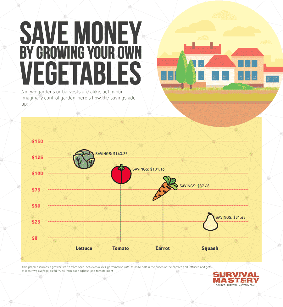 Growing your own veggie infographic