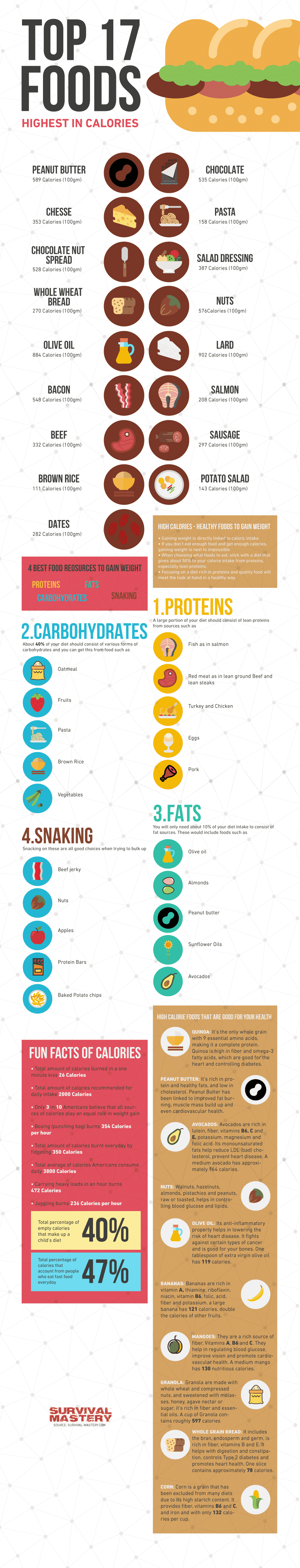 High Calorie Healthy Foods infographic