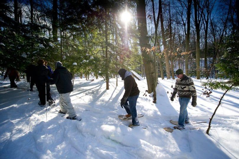 Snowshoeing trails